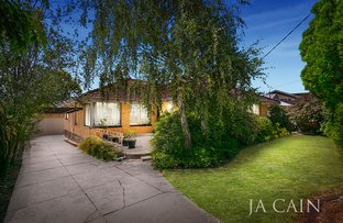 Picture of 10 Laura Grove, Mount Waverley VIC 3149