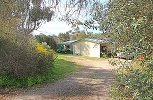 Picture of 36 Main North Road, Watervale SA 5452