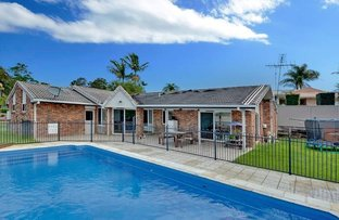 Picture of 7 Greenleaf Court, Buderim QLD 4556