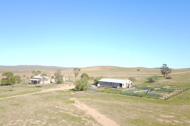 Picture of 135 Steggles Rd, TEROWIE SA 5421