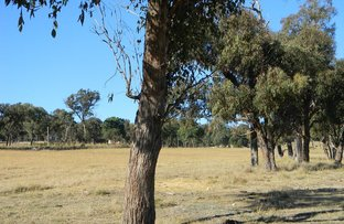 Picture of Lot 620 Eukey Road, Stanthorpe QLD 4380
