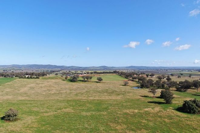 Picture of 327 Springfield Lane, MUDGEE NSW 2850