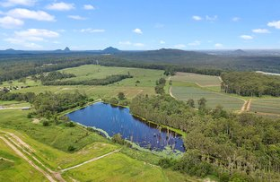 Picture of D'Aguilar QLD 4514