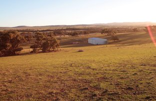 Lot 401 North Hills Road, Dutton East SA 5356