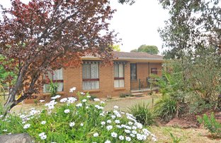 Picture of 11 James Street, Junee NSW 2663
