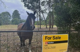 Picture of 145 Old Beech Forest Road, Gellibrand VIC 3239