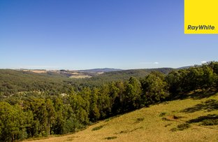 Picture of 155 Ridge Road, Noojee VIC 3833