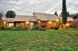 Picture of 198 Gurney Road, Loxton SA 5333