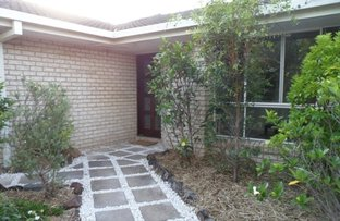 Picture of 7 Hoad Court, Oxenford QLD 4210