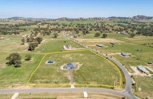 Picture of 231 Coogera Circuit, Jindera NSW 2642