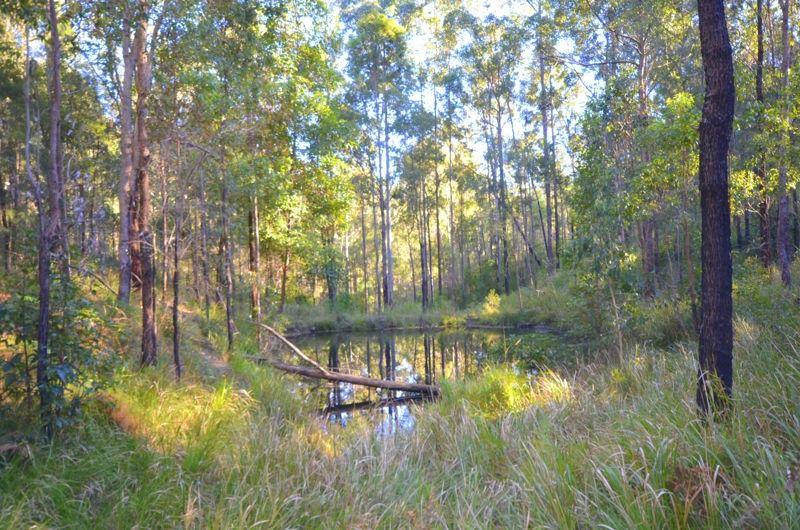 Lots 483 & 487 Goodla Road, Sandy Creek QLD 4515, Image 1