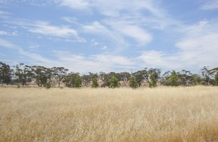 Picture of Toodyay WA 6566