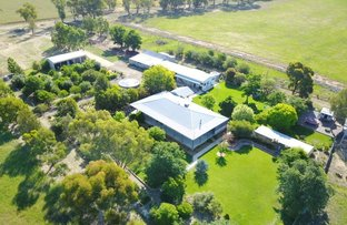 Picture of 150 Rowans Lane, Bendick Murrell NSW 2803