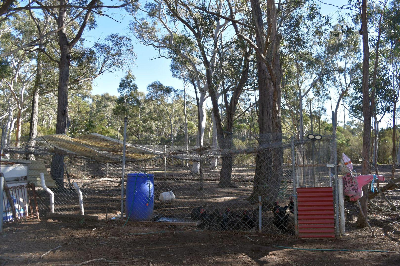 930 Sandy Point Road, Lower Boro NSW 2580, Image 1