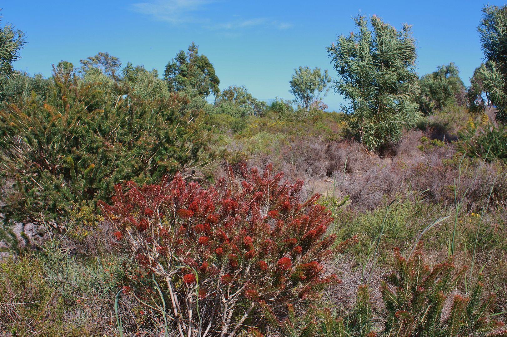 170 Darch Trail, Gabbadah WA 6041, Image 1