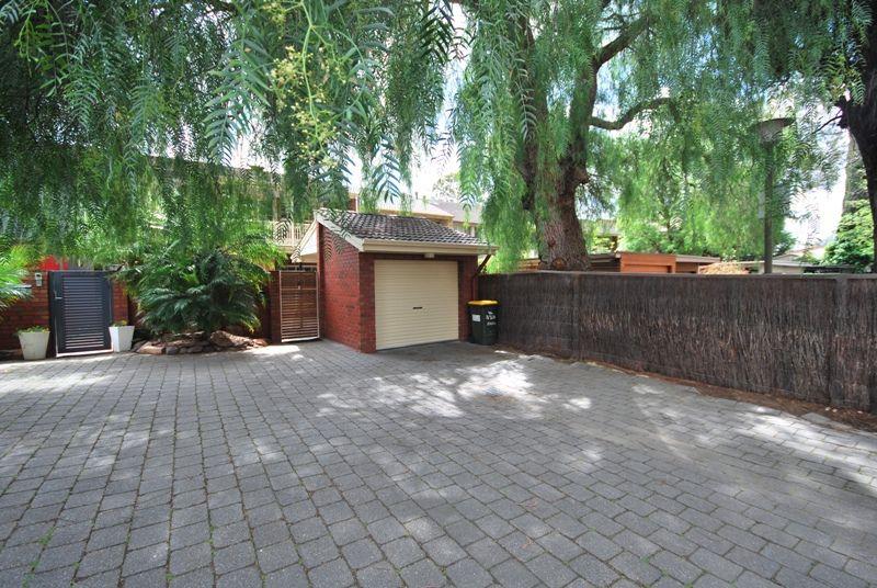 3/326 Angas Street, Adelaide SA 5000, Image 2