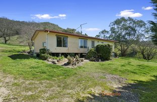 Picture of Lot 1/818 Upper Murray Rd, Towong Upper VIC 3707