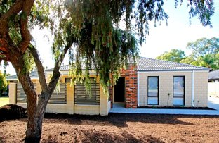 Picture of 31A Martin Avenue, Rivervale WA 6103