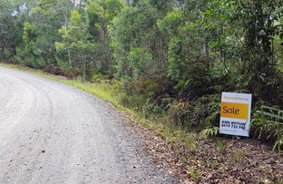 Picture of Lot 1 Thornton Peak Drive, Daintree QLD 4873