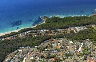 Picture of 38 Shelly Beach Road, Port Macquarie NSW 2444
