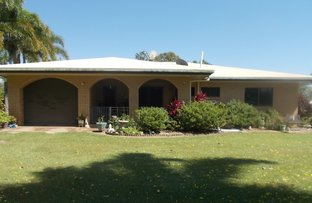 Picture of 460 Springs Rd, Paddys Green QLD 4880
