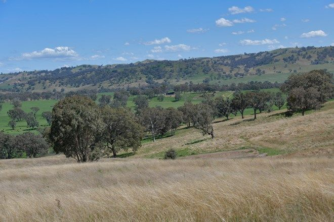 Picture of Wombramurra East, NUNDLE NSW 2340