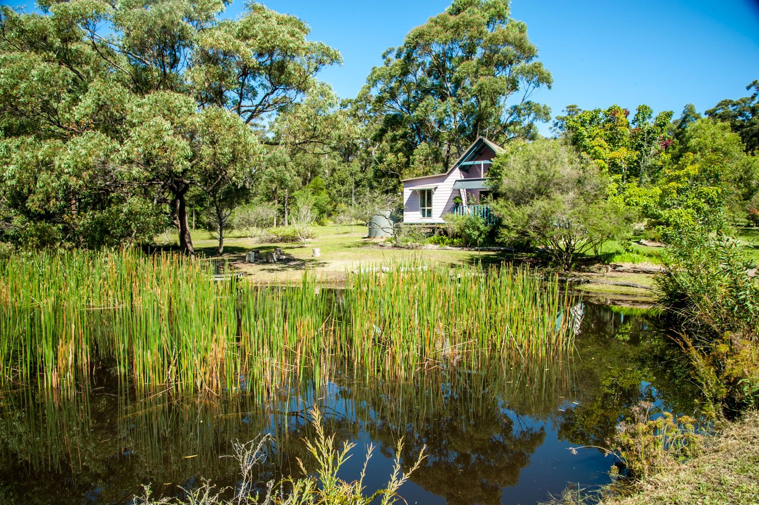 96 Bawley Point Road, Termeil NSW 2539, Image 0