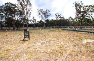 Picture of 31 Belford Circuit, Tahmoor NSW 2573