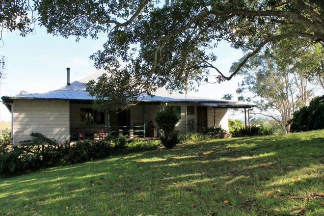Picture of 214 Homeleigh Road, Homeleigh, KYOGLE NSW 2474