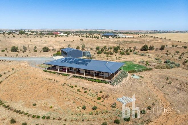 Picture of 101 Magpie Crescent, MANNUM SA 5238