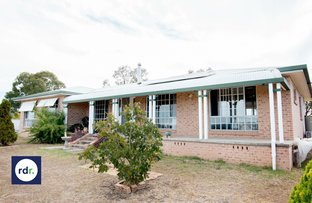 Picture of 37 Dog Trap Lane, Inverell NSW 2360