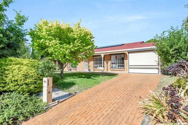 Picture of 182 States Road, MORPHETT VALE SA 5162