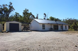Picture of Warialda NSW 2402
