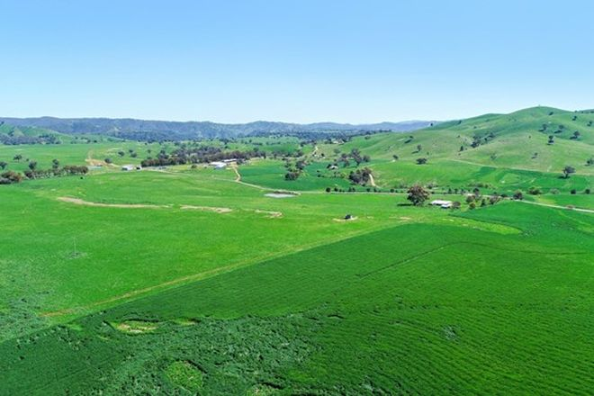 Picture of 2755 Triamble Rd, TRIAMBLE NSW 2850