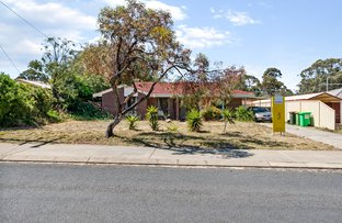 Picture of 42 RENDELL ELBOW, Withers WA 6230