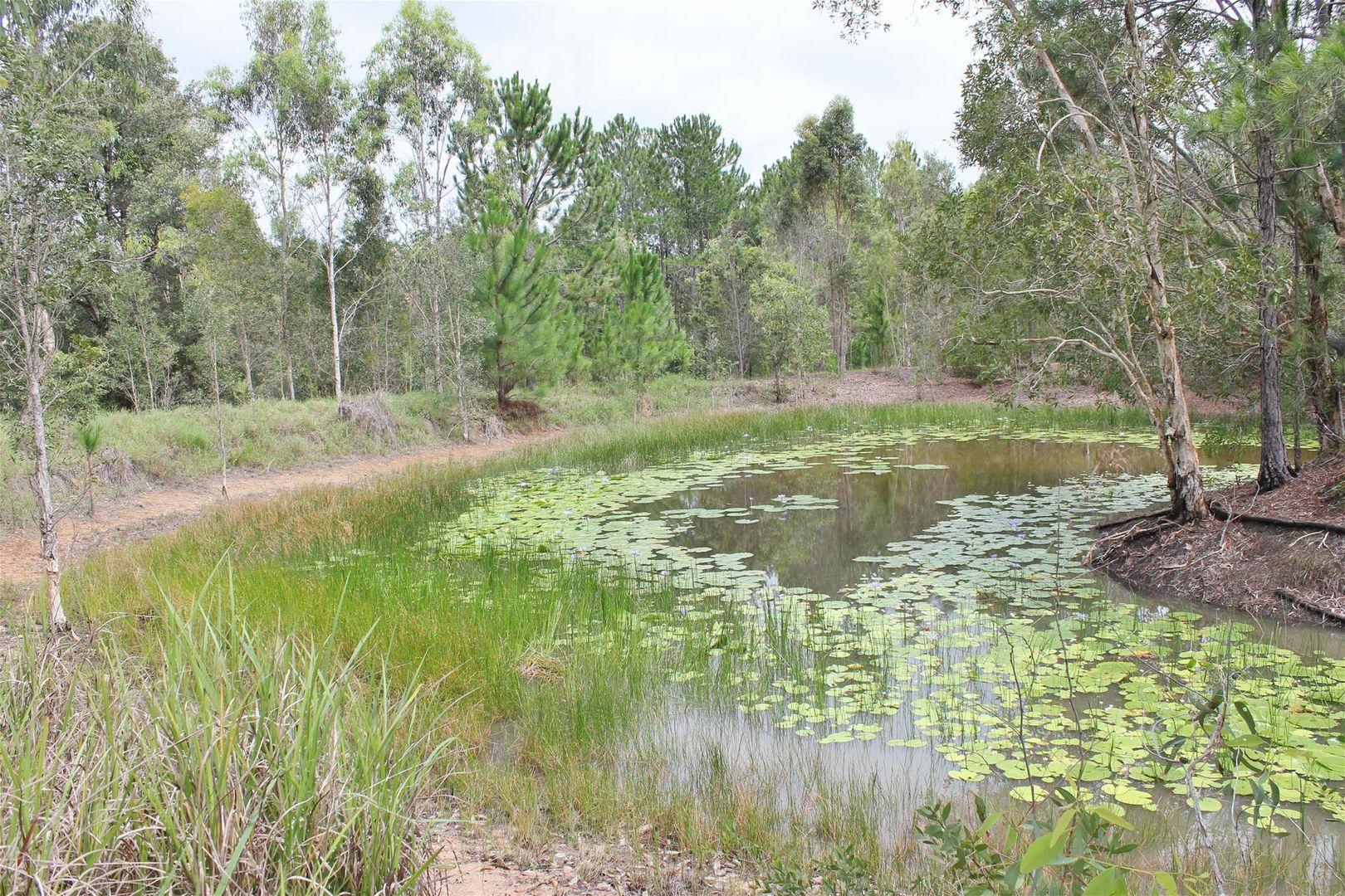 11 Lake Cooroibah Road, Cooroibah QLD 4565, Image 2