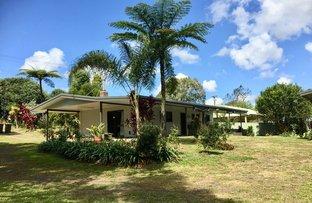 Picture of 9 English Road, Malanda QLD 4885