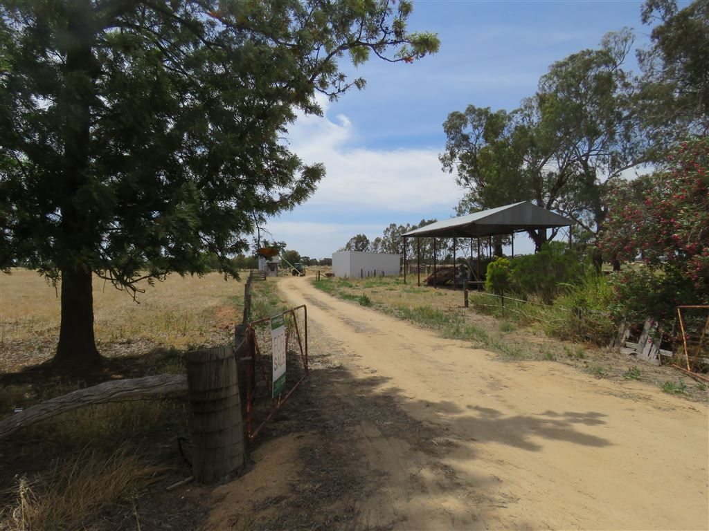 295 Picola South Road, Nathalia VIC 3638, Image 2