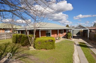 Picture of 6 Jenkins Drive, Sebastopol VIC 3356