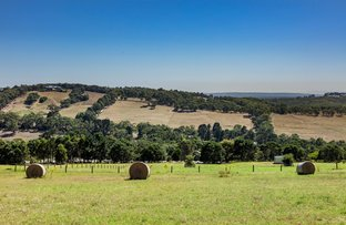Picture of 116 Donaldsons Road, Red Hill VIC 3937