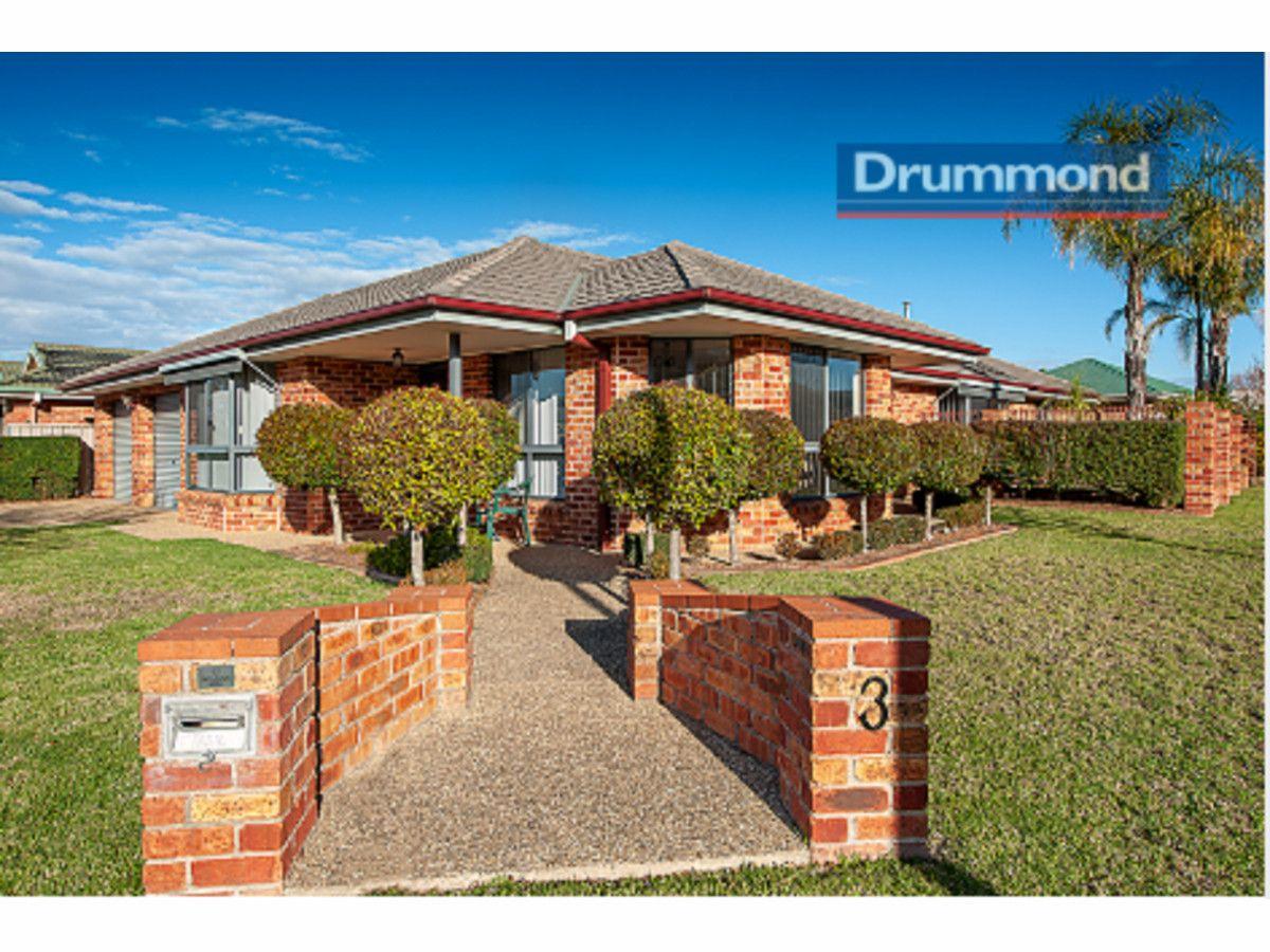3 Bizet Place, Glenroy NSW 2640, Image 0