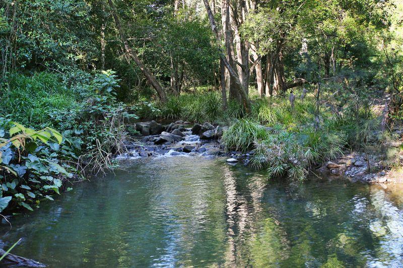 1062 Maleny-Kenilworth Rd, Elaman Creek QLD 4552, Image 0