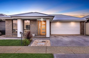 Picture of 7 Drupe Street, Munno Para West SA 5115