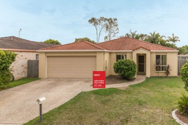 Picture of 8 Caulfield Close, LITTLE MOUNTAIN QLD 4551