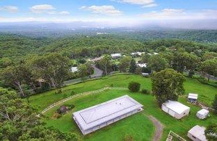 Picture of 335 Landsborough-Maleny Road, Mount Mellum QLD 4550