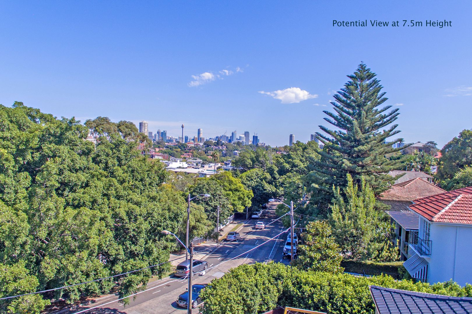 141 Bellevue Road, Bellevue Hill NSW 2023, Image 0