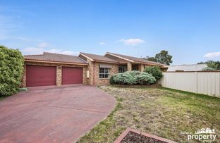 Picture of 16 Jack Court, Alfredton VIC 3350