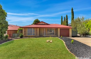 Picture of 1 Landseer Place, Hillbank SA 5112