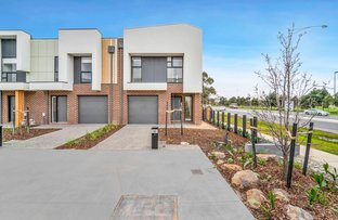 Picture of 31 Chameleon Terrace, Point Cook VIC 3030