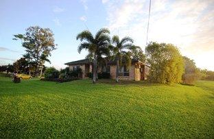 10 Coates Rd, Ingham QLD 4850